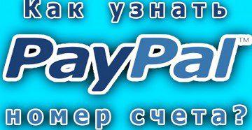 PayPal как узнать номер счета