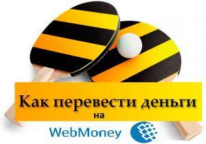 Как можно перевести деньги со счета Beeline на кошелек Webmoney?5c5b3c7a218e1
