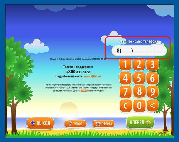 Qiwi введите номер5c5b3d551786a