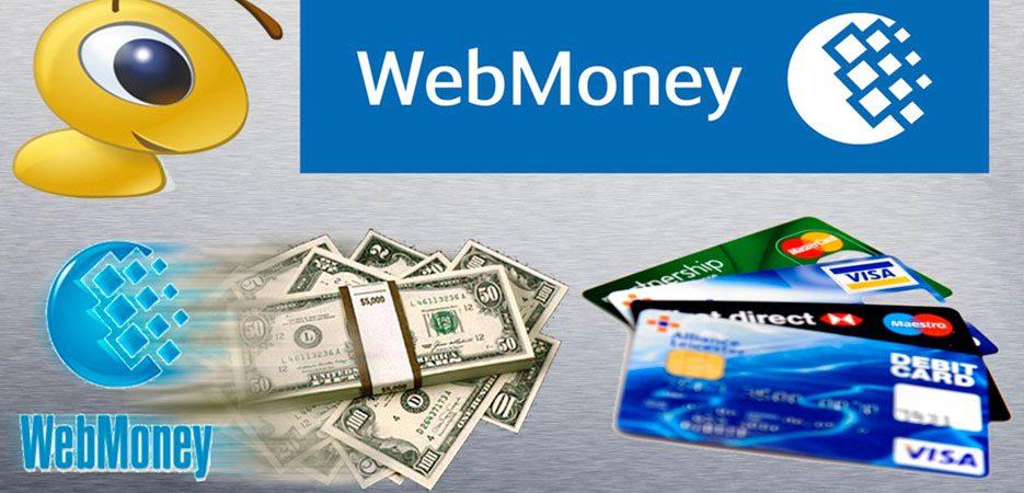 Как в Беларуси положить деньги на счет в Вебмани: все распространенные способы5c5b3db0b25fa