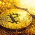 Монета Bitcoin Gold5c5b410cf2f33