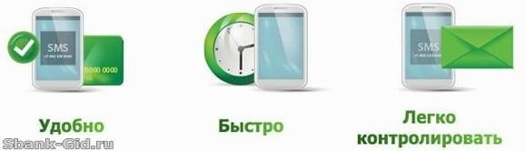 Достоинства услуги автоплатеж от Сбербанка5c5b445aeb310