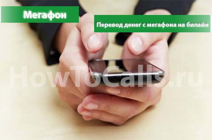 Как перевести деньги с мегафона на билайн5c5b452511460