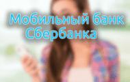 5c5b595e53112