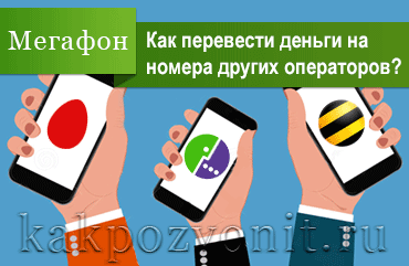 Как перевести деньги с Мегафона на МТС, Билайн, Теле2, Ростелеком, Йота, Мотив и др.5c5b14ae34fd8