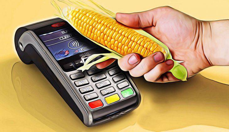 Займы на карту Кукуруза: где и как получить, популярные МФО, оформление, особенности и плюсы5c5b345551b2d