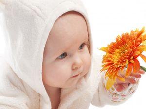 Документы для получения губернаторских выплат на третьего ребенка5c5b35281fd94