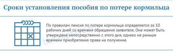 sroki-ustanovleniya-posobiya-po-potere-kormilca5c5b375a15200