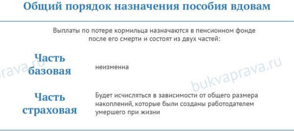 obshchij-poryadok-naznacheniya-posobiya-vdovam5c5b375aba4d8