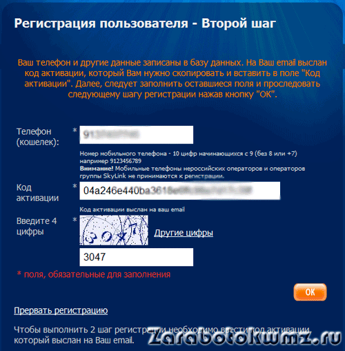 Код введён5c65a9799a6fe