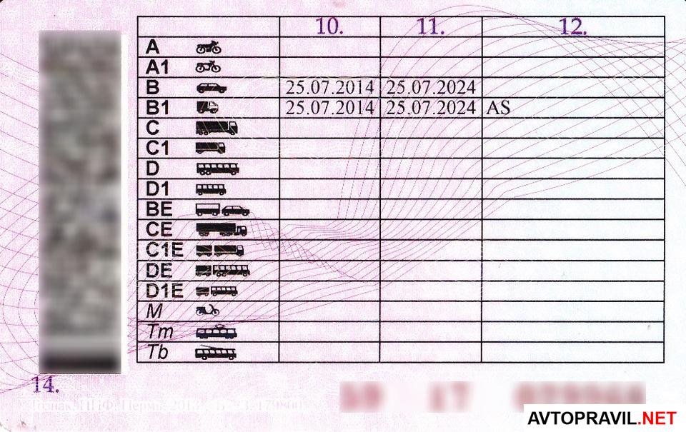 Обратная сторона водительского удостоверения5c61c95647be1