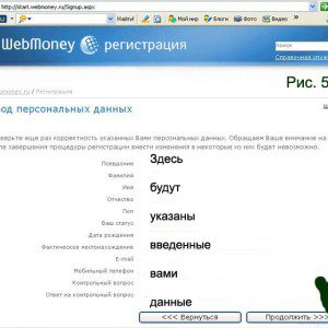ввод данных из письма, полученного от Webmoney5c797002394c9