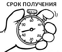 Срок получения выписки из ЕГРП (ЕГРН)5c6253c017040