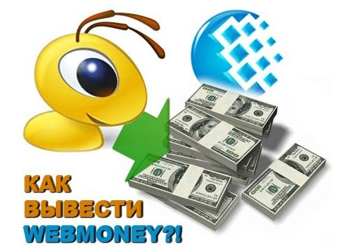 Как обналичить деньги с webmoney5c625b1618964