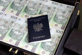 Владельцам счетов в PayPal обязательно указывать паспортные данные для того, чтобы получить доступ ко всем возможностям системы5c9e13a334cd9