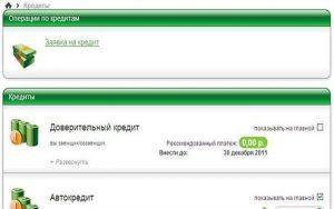 kak-oformit-kredit-v-sberbank-onkine5c628d63c7ee0