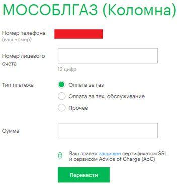 Строки электронного бланка 5c62b306502b2