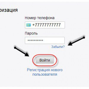 авторизация в системе5cb96ec7bbdba
