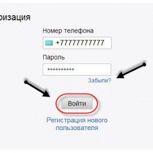 авторизация в системе5c62bc64bfeb2